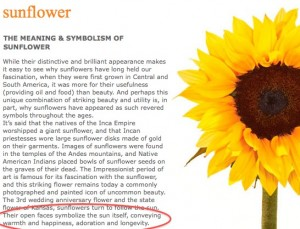bella domain media sunflower