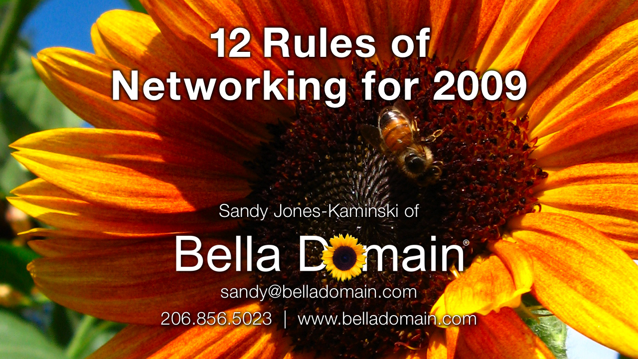 Bella Domain White Paper Networking for 2009