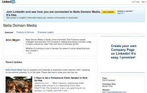 Bella Domain Media's LinkedIn Company Page