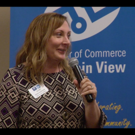 Sandy Jones-Kaminski presenting at LinkedIn Live in Silicon Valley Nov 2014