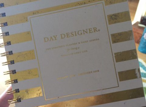 Tools for Savvy Professionals: Day Designer